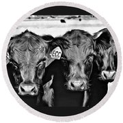 Three Amigos-2 Round Beach Towel by Barbara Dudley