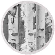 Three Aspens In Black And White  Round Beach Towel