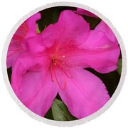 Three Azaleas Round Beach Towel
