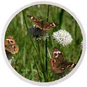 Three Buckeye Butterflies On Wildflowers Round Beach Towel