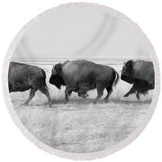 Three Buffalo In Black And White Round Beach Towel