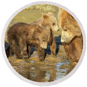 Three Cubs And Mother Drinking At The River Round Beach Towel