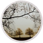 Round Beach Towel featuring the photograph Three Cypress In The Mist by Iris Greenwell