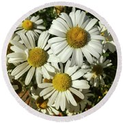 Three Daisies Round Beach Towel by Garry McMichael