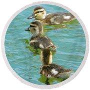 Three Ducklings Swimming Round Beach Towel