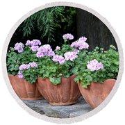 Three Flower Pots Round Beach Towel by Deborah  Crew-Johnson