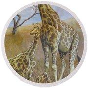 Three Giraffes Round Beach Towel