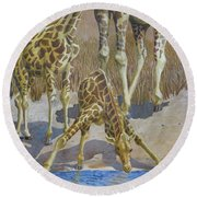 Three Giraffes Round Beach Towel