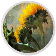Round Beach Towel featuring the photograph Three by John Rivera