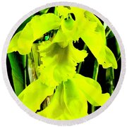 Three Orchids In Yellow Round Beach Towel