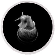 Three Snails Round Beach Towel