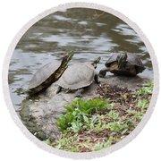 Three Turtles Round Beach Towel