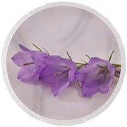 Three Wild Campanella Blossoms - Macro Round Beach Towel by Sandra Foster