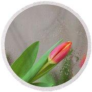 Through The Tulips. Round Beach Towel