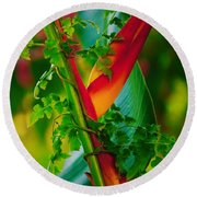 Through The Vines Round Beach Towel