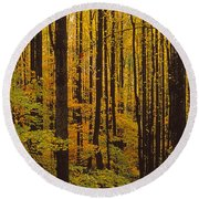 Through The Yellow Veil Round Beach Towel