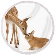 Thumper And Bambi Round Beach Towel