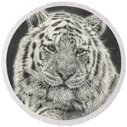 Tiger Drawing Round Beach Towel