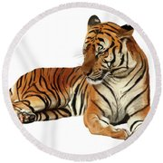 Tiger In Repose Round Beach Towel