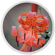 Tiger Lily 2 Round Beach Towel