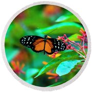 Round Beach Towel featuring the photograph Tiger Longwing Butterfly by David Morefield