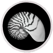 Tiger Nautilus Shell Round Beach Towel by Jim Hughes