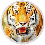 Tiger On The Hunt Round Beach Towel by David Millenheft