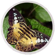 Tiger Print --- Clipper Butterfly Round Beach Towel