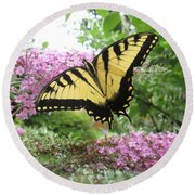 Tiger Swallowtail Round Beach Towel by Bill OConnor