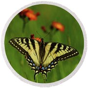 Tiger Swallowtail Butterfly Round Beach Towel by Nancy Landry