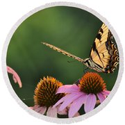Tiger Swallowtail Round Beach Towel