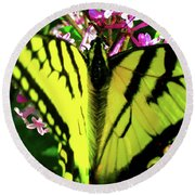 Tiger Swallowtail On Lilac Round Beach Towel by Randy Rosenberger