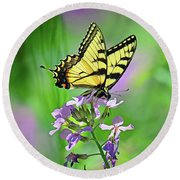 Round Beach Towel featuring the photograph Tiger Swallowtail by Rodney Campbell