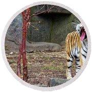 Tiger Tiger Burning Bright Round Beach Towel