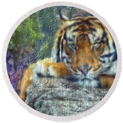 Tigerland Round Beach Towel by Michael Cleere