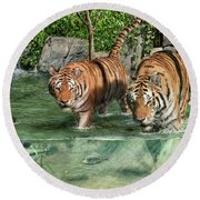 Tiger's Water Park Round Beach Towel