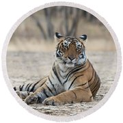 Tigress Arrowhead Round Beach Towel