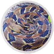 Timber Rattler Round Beach Towel