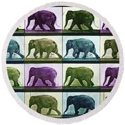 Time Lapse Motion Study Elephant Color Round Beach Towel