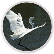 Time To Land Round Beach Towel by Carolyn Marshall