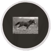 Timeless And Hopeful Horse  Round Beach Towel