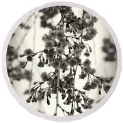 Tiny Buds And Blooms Round Beach Towel