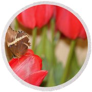 Tip Toe Through The Tulips Round Beach Towel by Living Color Photography Lorraine Lynch