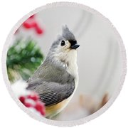 Round Beach Towel featuring the photograph Titmouse Bird Portrait by Christina Rollo