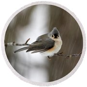 Titmouse During Snow Storm Round Beach Towel