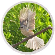 Titmouse Takeoff Round Beach Towel by Kathy Kelly