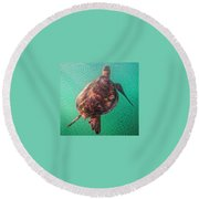 Tito The Turtle Round Beach Towel by Erika Swartzkopf