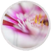 Round Beach Towel featuring the photograph To Live In Dream 1. Macro Gerbera by Jenny Rainbow