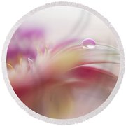 Round Beach Towel featuring the photograph To Live In Dream 2. Macro Gerbera by Jenny Rainbow