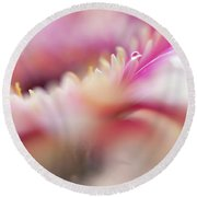 Round Beach Towel featuring the photograph To Live In Dream 5. Macro Gerbera by Jenny Rainbow